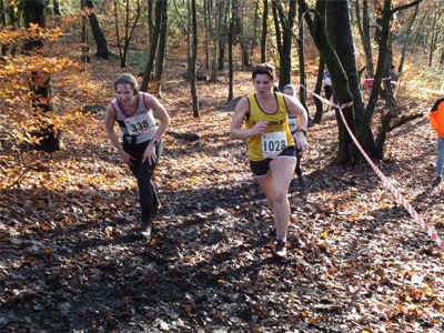 Red Rose Cross Country at Bolton 2014
