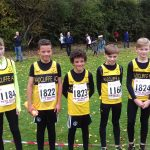 Boys line up for cross country.